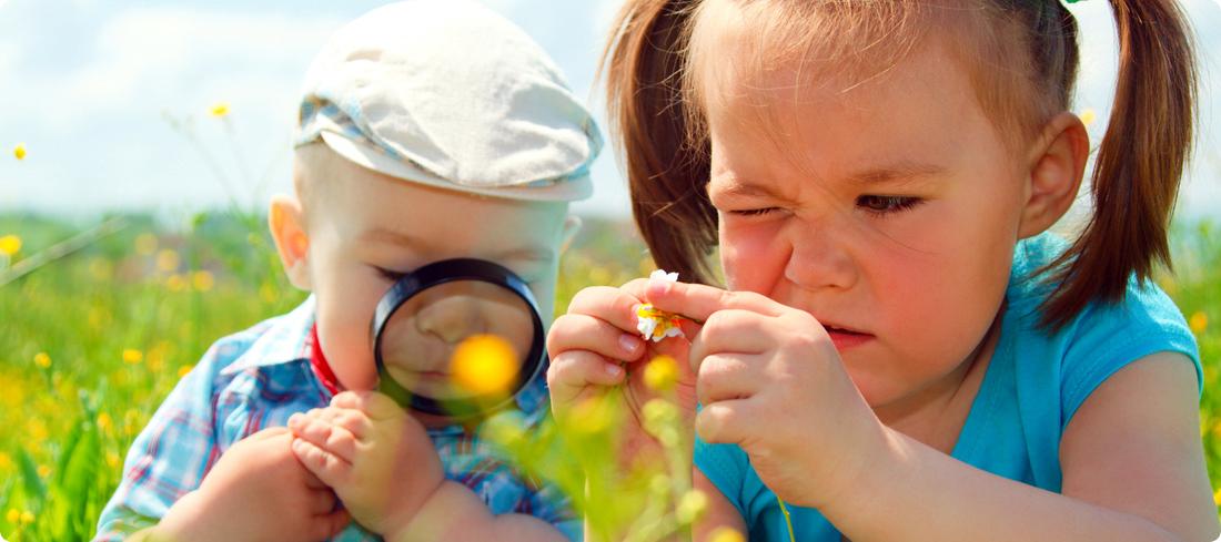 Kindjes in het gras kijkend naar bloemen